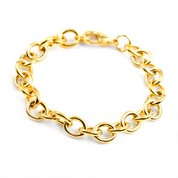 Gold Plated Stainless Bracelet for Charms