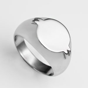 Polished Stainless Steel Oval Ring Size 7